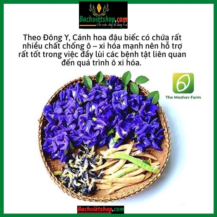 Trà hoa đậu biếc được sử dụng làm màu thực phẩm